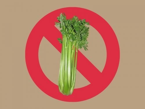 "Tan background with image of green celery superimposed over red ""no"" symbol, circle with a strike through indicating ""no celery"""