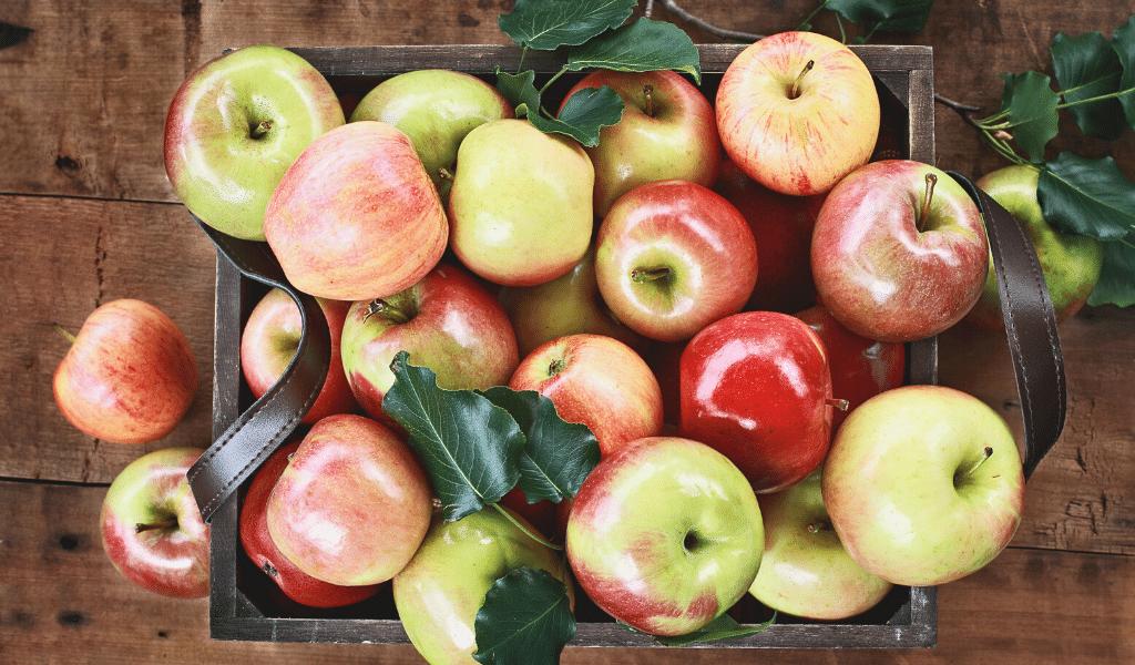 apples varieties on a table