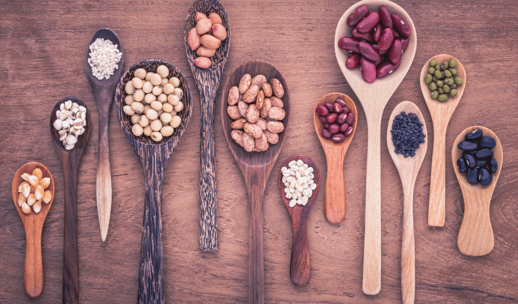 wooden spoons filled with beans and lentils
