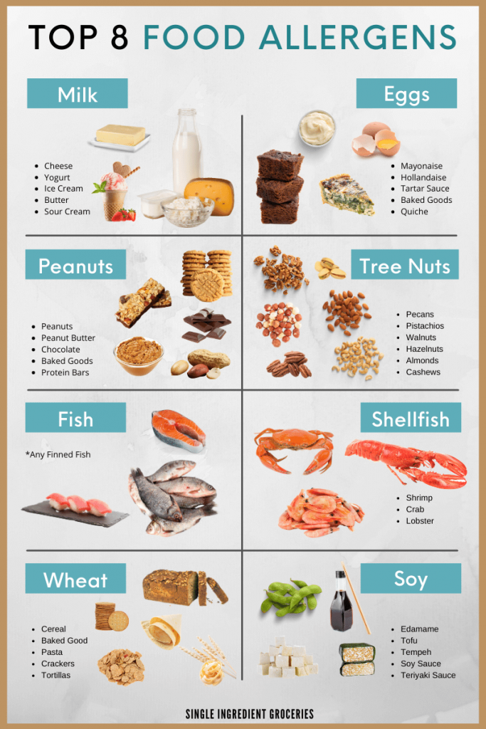 top 8 food allergens infographic displaying milk, eggs, peanuts, tree nuts, fish, shellfish, wheat, and soy food allergies