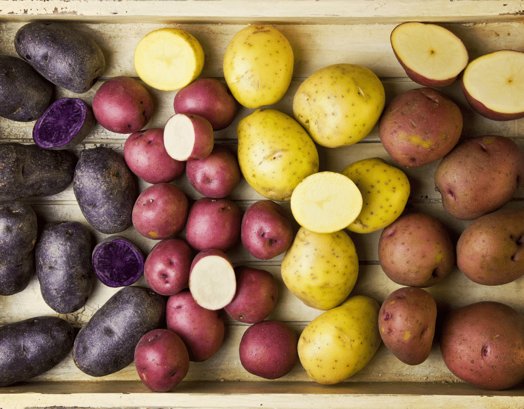 purple ,red, and yellow potatoes are are displayed on a wood tray